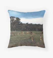 They were llooking back to see if I was looking back to see if they were looking back at me. Throw Pillow