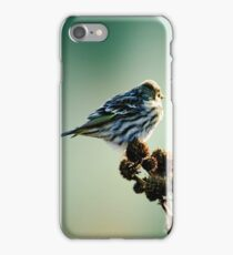 Illusions.... iPhone Case/Skin
