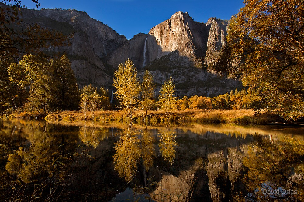 Fall in Yosemite National Park by David Orias