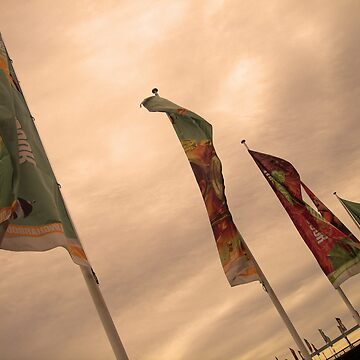 Flags by stacky