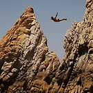 Acapulco Diver by Patrick  Ellis