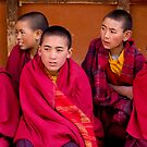 Young Monks in Ladakh by Patrick  Ellis