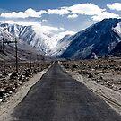 Ladakh Road by Patrick  Ellis