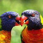 Love Birds by Jo Nijenhuis