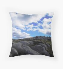 landscape in NI Throw Pillow