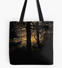 7 star ******* Lappland sunset - Sweden. Brown Sugar Story. Tote Bag