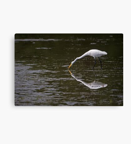 A paler shade of White Canvas Print