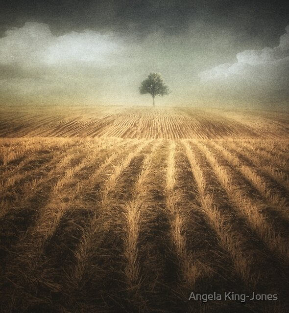 Where the sky meets the Earth by Angela King-Jones