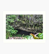 Fern Grotto Art Print