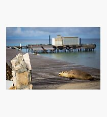 Abrolhos Islands, Western Australia Photographic Print