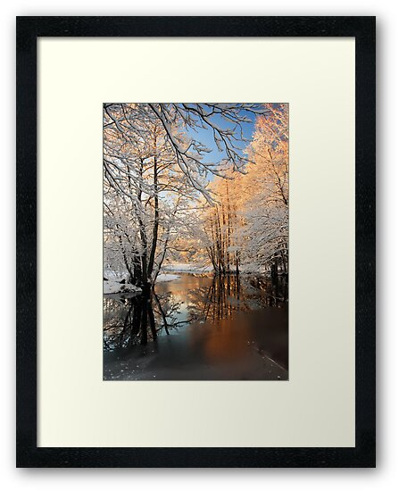 River landscape with hoarfrost trees by Romeo Koitmäe