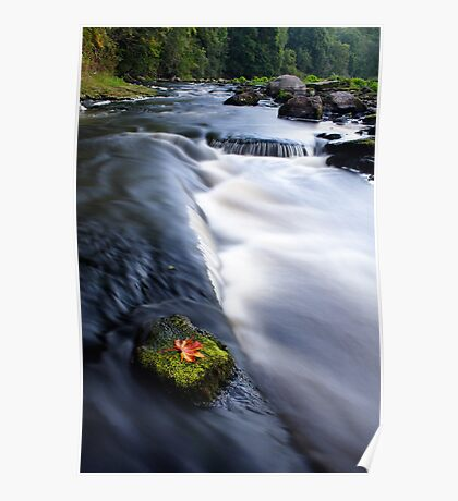 Picturesque countryside river Poster
