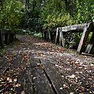 little bridge by Lisa Kenny