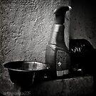 Still Life with Spraybottle - Still-Leben mit Sprühflasche by mimulux