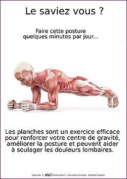 Planches Musculo-squelettique des positions de Yoga - N°2