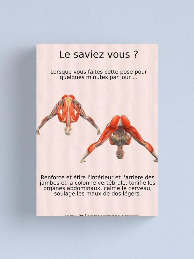 Impression sur toile ''Planches Musculo-squelettique des positions de Yoga - N°3': autre vue