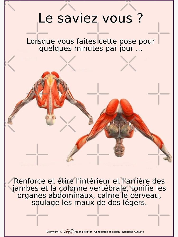 «Planches Musculo-squelettique des positions de Yoga - N°3» par rodolphe-a