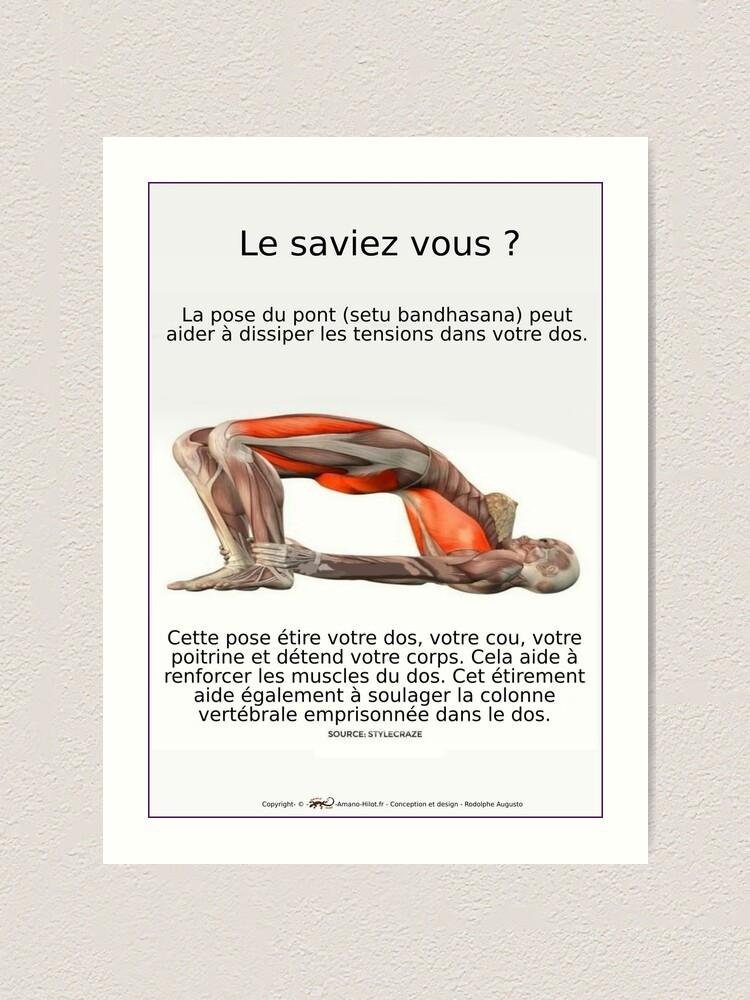Impression artistique ''Planches Musculo-squelettique des positions de Yoga - N°4': autre vue