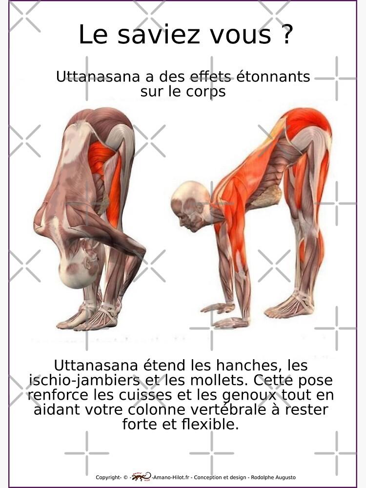 «Planches Musculo-squelettique des positions de Yoga - N°7» par rodolphe-a