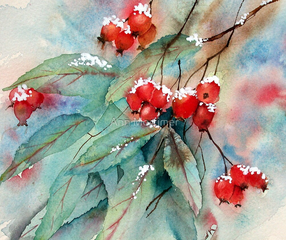 Snowy Rosehips by Ann Mortimer