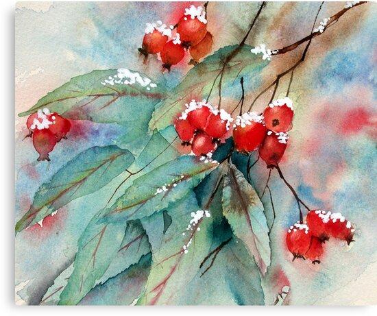 Snowy Rosehips by Ann Mortimer