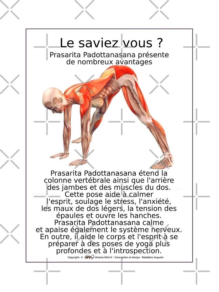 «Planches Musculo-squelettique des positions de Yoga - N°10» par rodolphe-a
