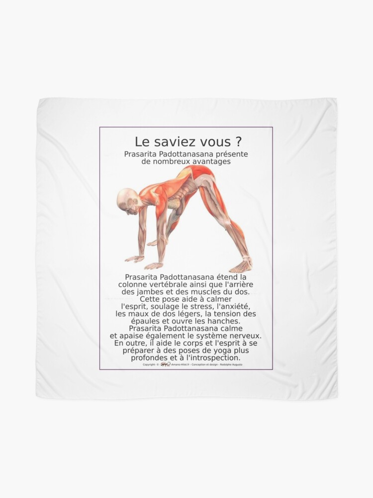 Foulard ''Planches Musculo-squelettique des positions de Yoga - N°10': autre vue