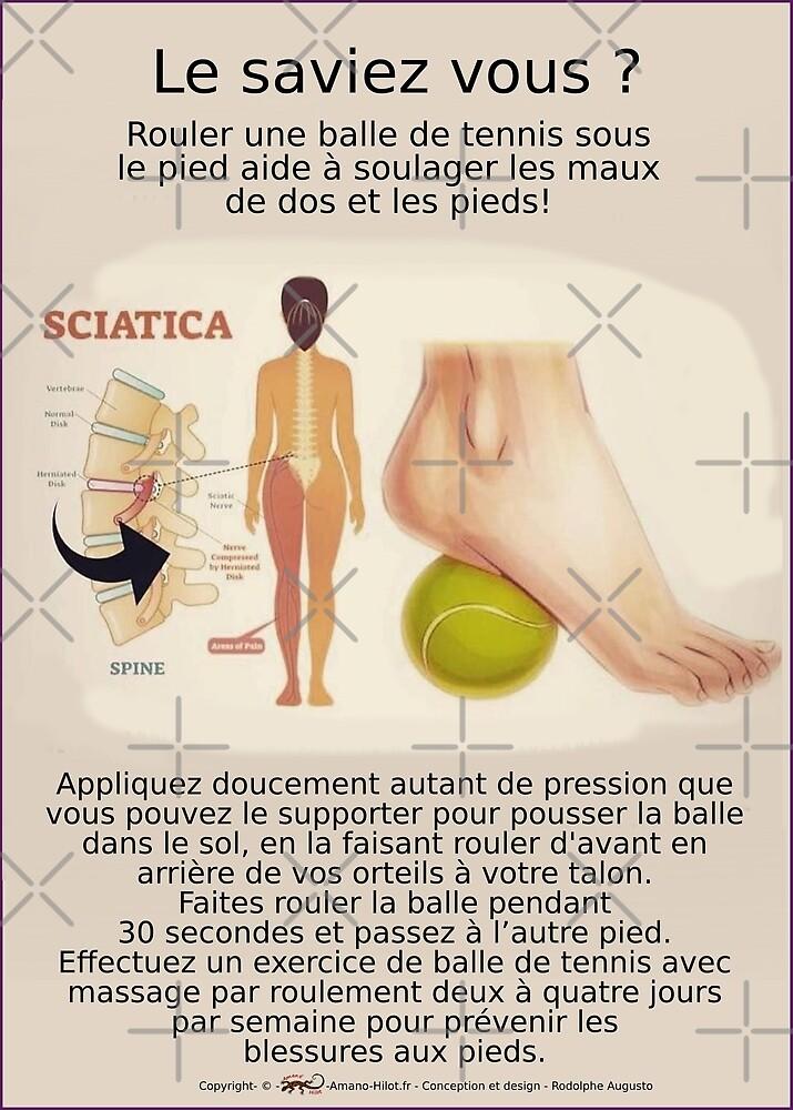 « Planches Musculo-squelettique des positions de Yoga - N°11 » par rodolphe Augusto
