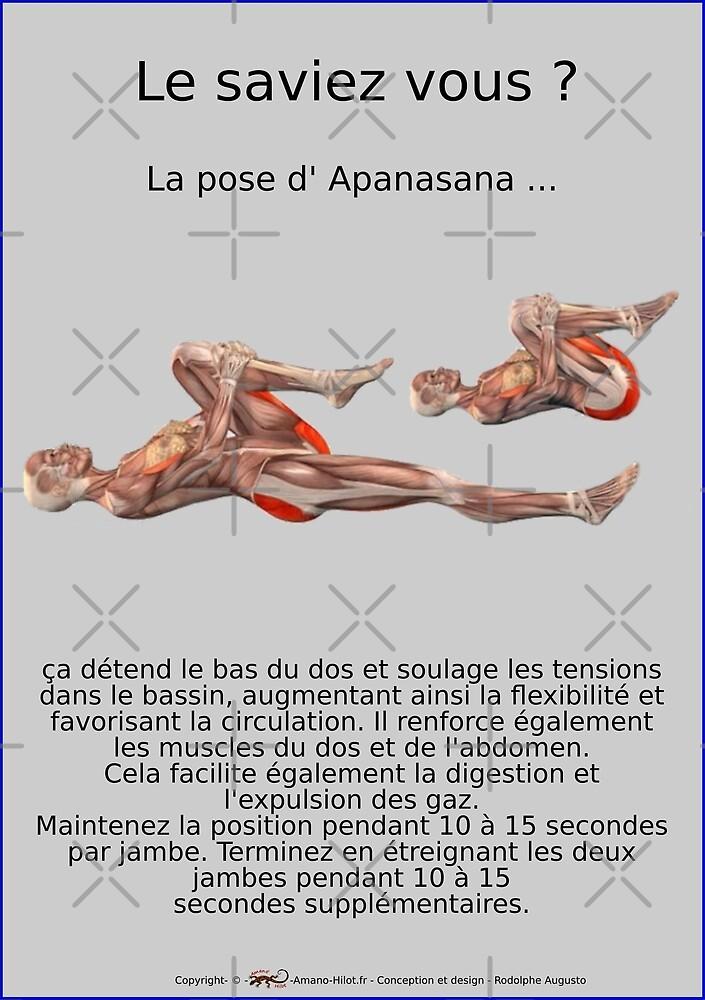 « Planches Musculo-squelettique des positions de Yoga - N°15 » par rodolphe Augusto