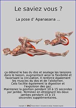 Planches Musculo-squelettique des positions de Yoga - N°15
