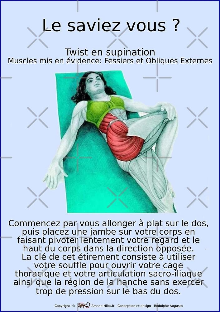 « Planches Musculo-squelettique des positions de Yoga - N°17 » par rodolphe Augusto
