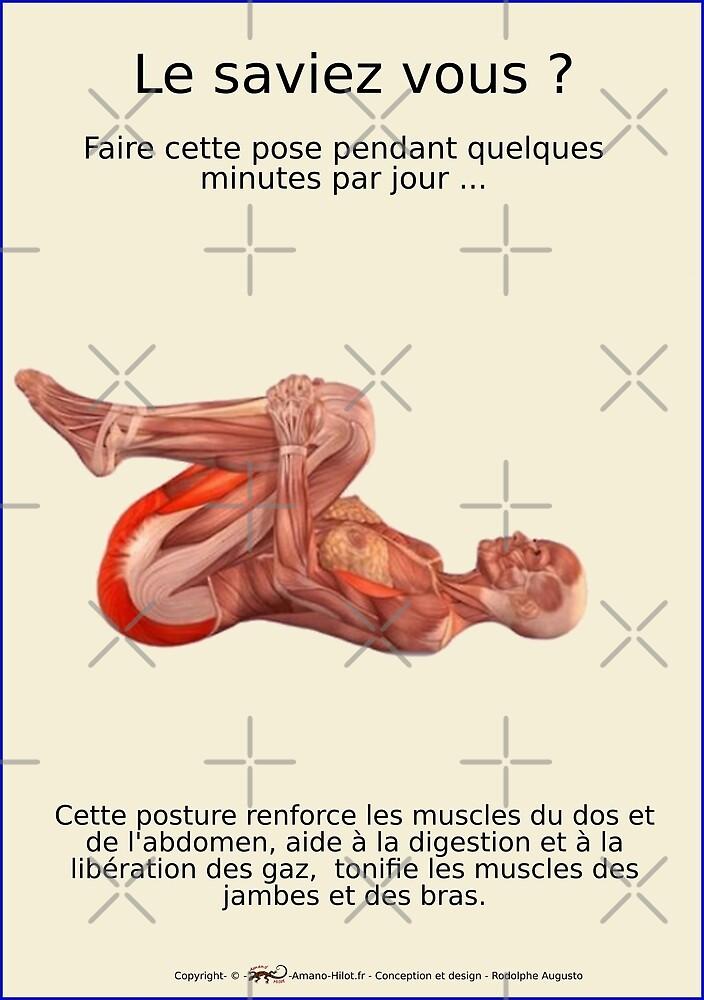 « Planches Musculo-squelettique des positions de Yoga - N°24 » par rodolphe Augusto