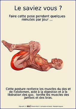 Planches Musculo-squelettique des positions de Yoga - N°24