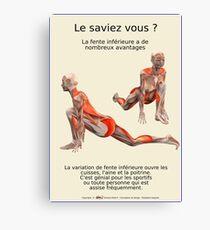 Planches Musculo-squelettique des positions de Yoga - N°25 Impression sur toile