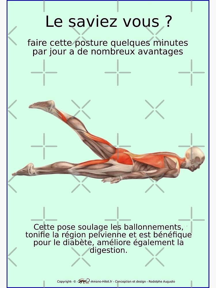 Musculoskeletal Planks of Yoga Positions - No. 26 by rodolphe-a