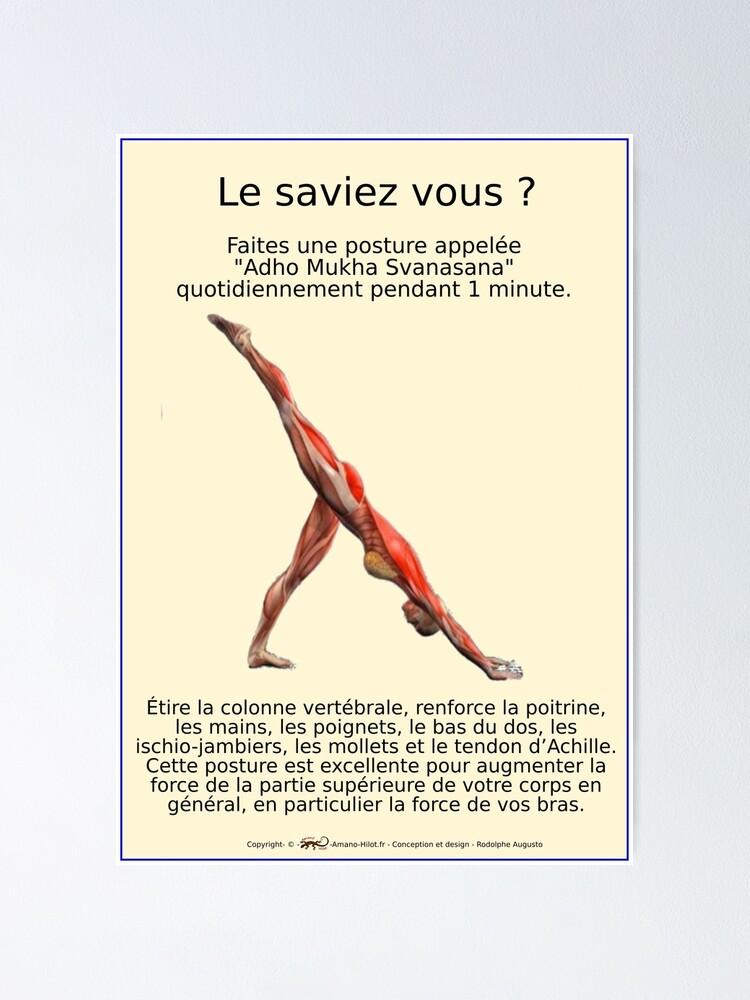 Poster ''Planches Musculo-squelettique des positions de Yoga - N°27': autre vue