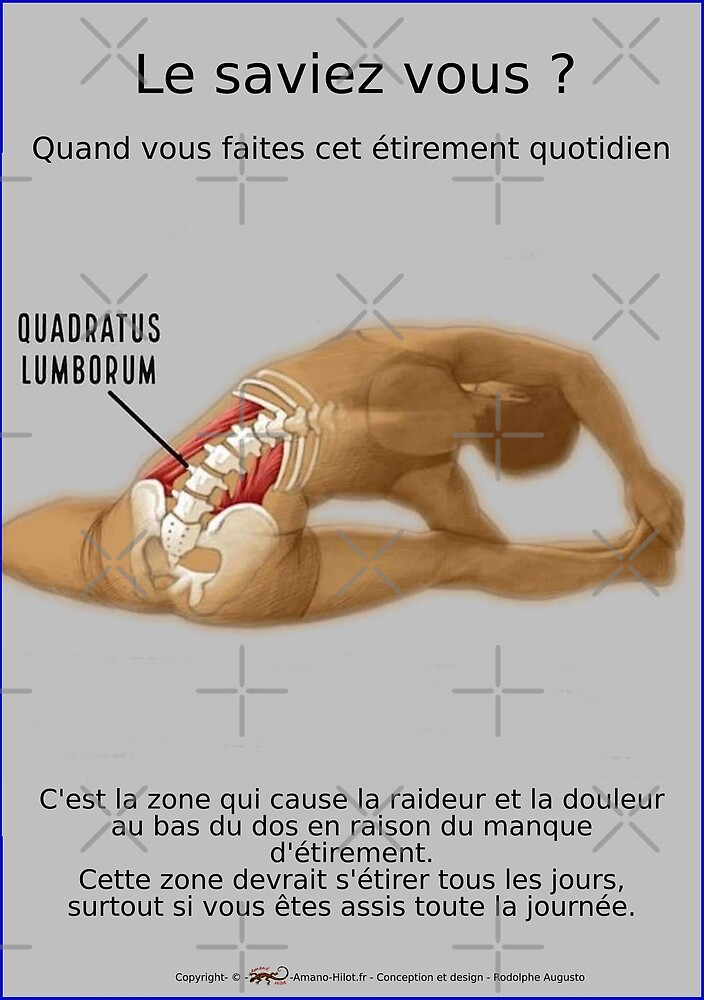 « Planches Musculo-squelettique des positions de Yoga - N°28 » par rodolphe Augusto
