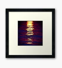 Sunshine On Linyanti Framed Print