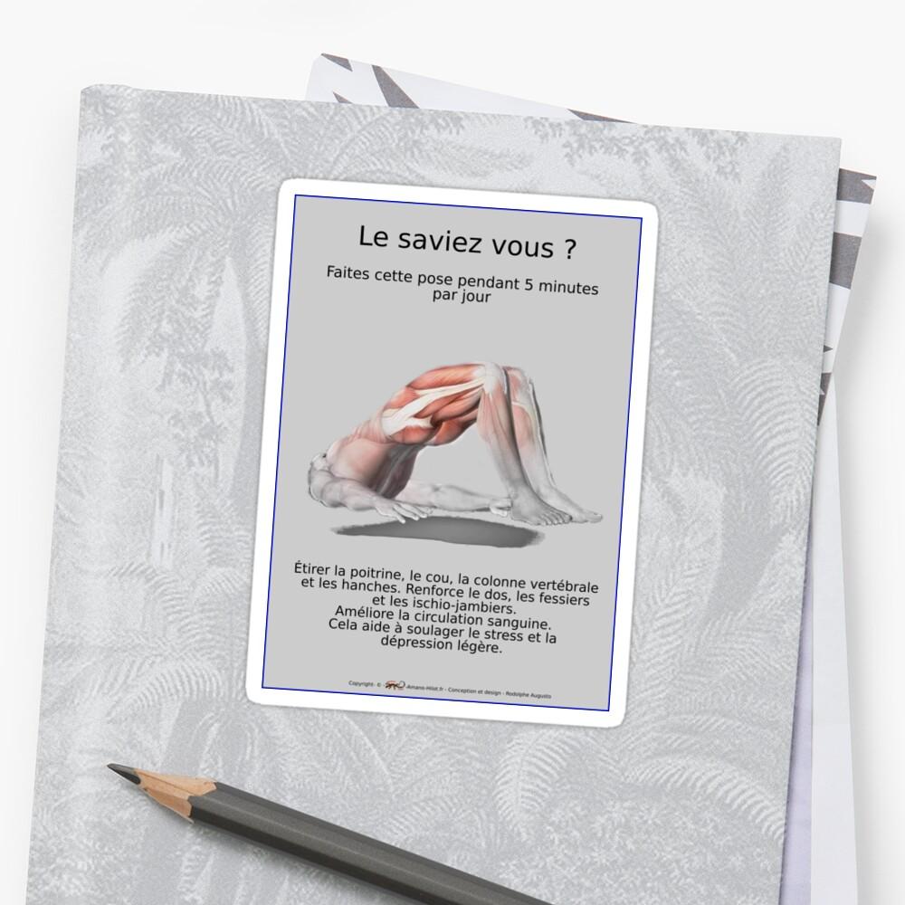 Sticker «Planches Musculo-squelettique des positions de Yoga - N°31»
