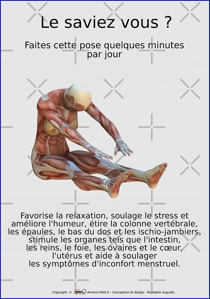 « Planches Musculo-squelettique des positions de Yoga - N°33 » par rodolphe Augusto