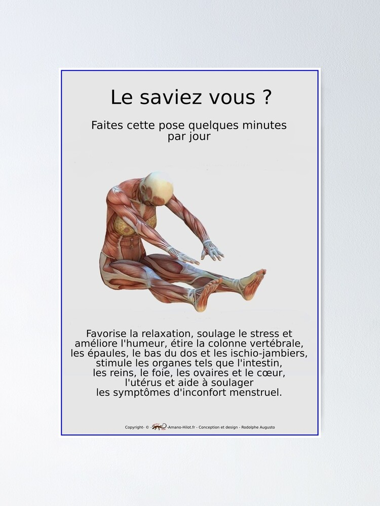 Poster ''Planches Musculo-squelettique des positions de Yoga - N°33': autre vue