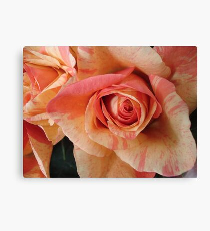 COLOR SPLASH ROSES Canvas Print