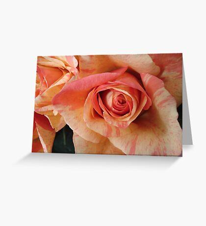 COLOR SPLASH ROSES Greeting Card
