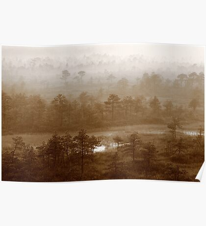 Mysterious at foggy morning Poster