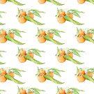 Clementine Oranges by Mariana Musa
