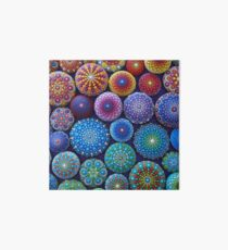 Rainbow Mandala Stone Collection Art Board