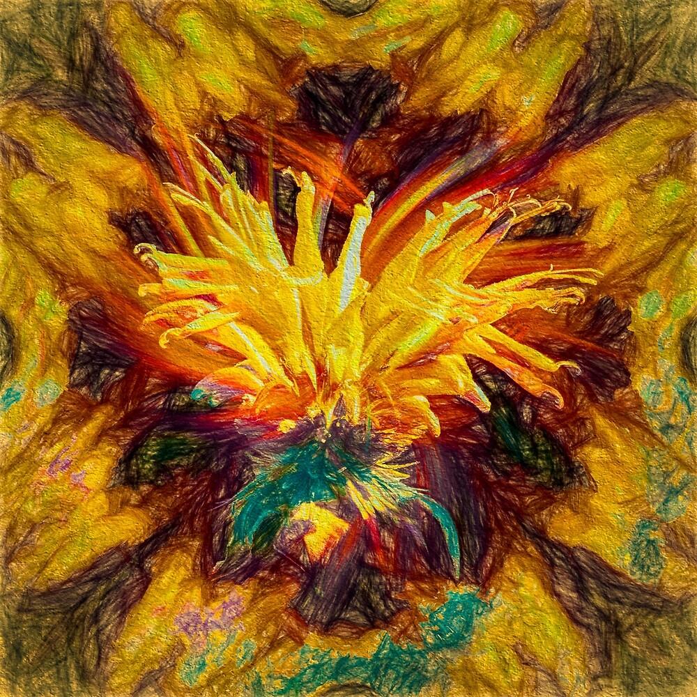 Bee Vision by Wib Dawson