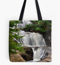 Sable Falls 2 Tote Bag