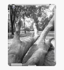Pinhole Tree iPad Case/Skin