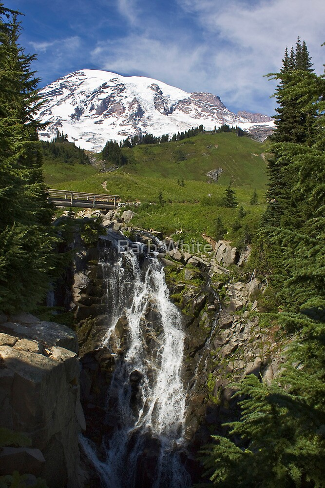 Myrtle Falls, Paradise, Mt. Rainier National Park by Barb White
